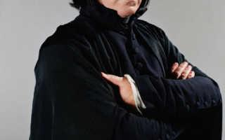 Учителя хогвартса фото с именами